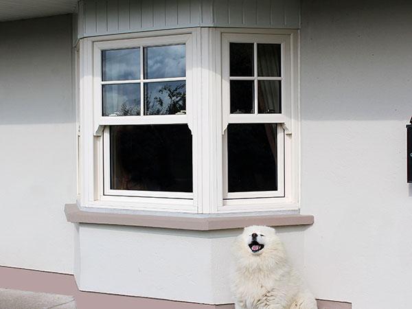 bay townhouse window